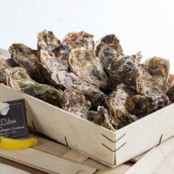 Livraison à domicile de plateaux de fruits de mer à la Réunion